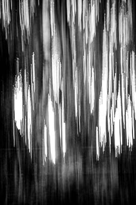 Photograph - Abstract Forest 4 by Spikey Mouse Photography