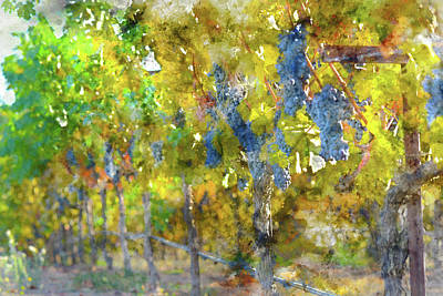 Abstract Grapes On The Vine Print by Brandon Bourdages