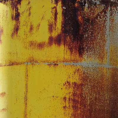 Photograph - Abstract In Yellow And Rust by Bill Tomsa