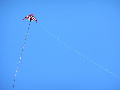 Kite Wall Art - Photograph - Abstract Kite Flying by Marilyn Hunt