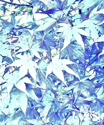 Abstract Leaves Original