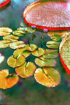 Photograph - Abstract Lily Pads by John Rivera