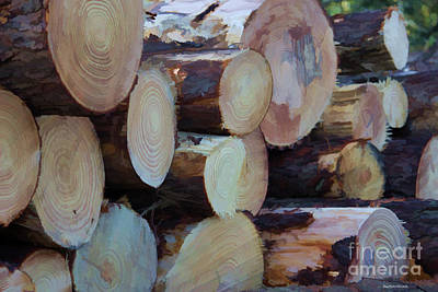 Photograph - Abstract Log Pile by Roberta Byram