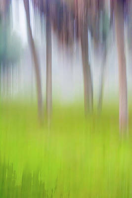 Photograph - Abstract Moving Trees #1 Background by Gene Norris