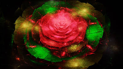 Digital Art - Abstract Of Floral by Rhonda Barrett