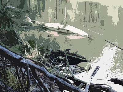 Target Threshold Nature - Abstract Of Merced River 6 by Eric Forster