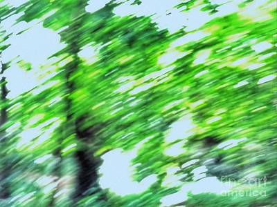 Digital Art - Abstract Of The Copse by Joan-Violet Stretch