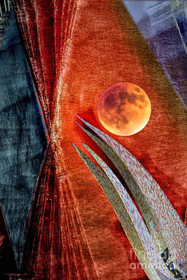 Digital Art - Abstract On Moon by Georgianne Giese