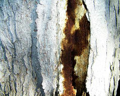 Art Print featuring the photograph Abstract One by Lenore Senior
