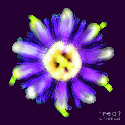 Photograph - Abstract Passion Flower In Violet Blue And Green 002p by Ricardos Creations