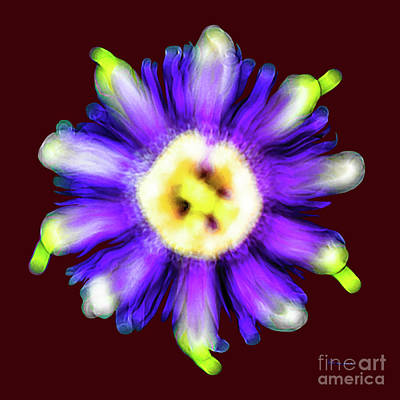 Photograph - Abstract Passion Flower In Violet Blue And Green 002r by Ricardos Creations
