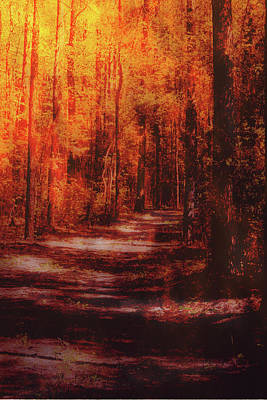 Mixed Media - Abstract Path by Lisa Stanley