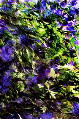 Digital Art - Abstract Purple Field by David Lane