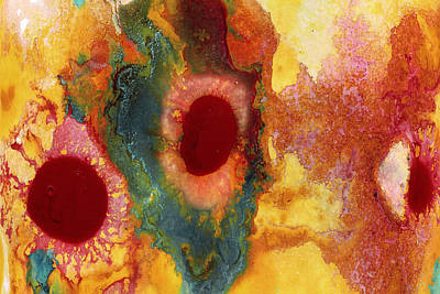 Drip Painting - Abstract Red Flower Garden 2 by Amy Vangsgard