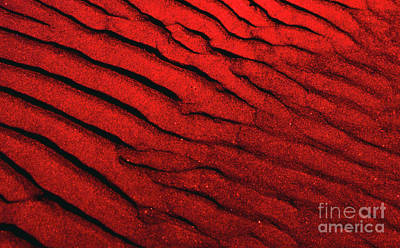 Photograph - Abstract Red Sand- 2 by Rick Bures