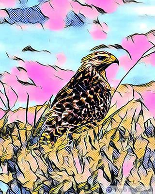 Digital Art - Abstract Red Tail Hawk  by Gary Smith
