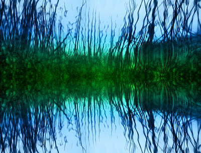 Photograph - Abstract Reeds No. 1 by Tammy Wetzel