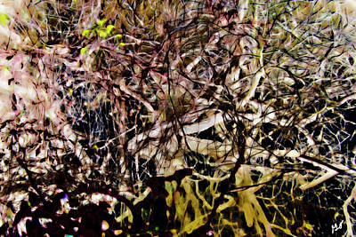 Photograph - Abstract Reflection Of A Bayou Color by Gina O'Brien