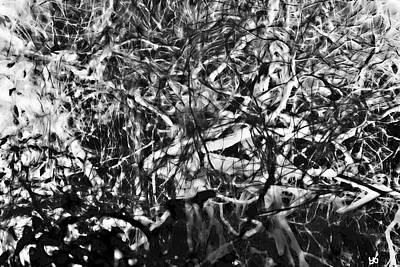 Photograph - Abstract Reflection Of A Bayou by Gina O'Brien