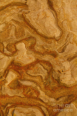 Photograph - Abstract Rock With Swirling Lines by Sharon Foelz