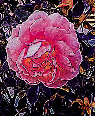 Abstract Rose 11 Art Print