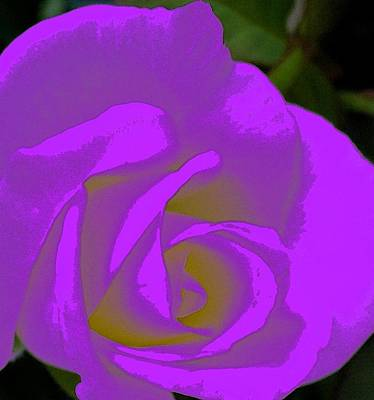 Digital Art - Abstract Rose by Florene Welebny