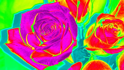 Blooming Roses Abstract Art Print