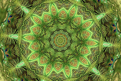 Computer Generated Flower Photograph - Abstract Series 4 by Geraldine Scull