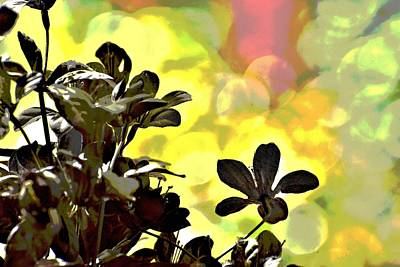 Target Threshold Nature Royalty Free Images - Abstract Silk Plant 1 Royalty-Free Image by Linda Brody