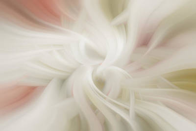 Digital Art - Abstract Softness by Diane Dugas