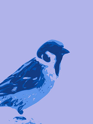 Digital Art - Abstract Sparrow Contours Blue by Keshava Shukla