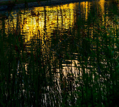Photograph - Abstract Sunset Reflection by Derek Dean