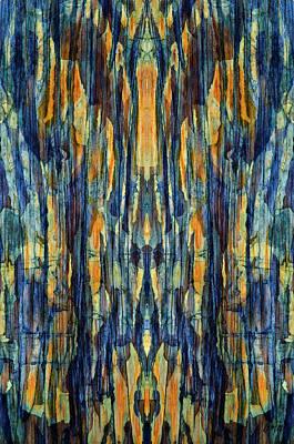 Photograph - Abstract Symmetry I by David Gordon