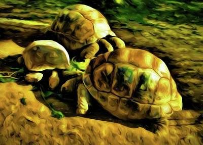 Photograph - Abstract Tortoises 5 by Kristalin Davis