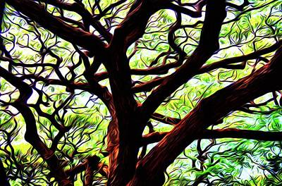 Photograph - Abstract Tree 50 by Kristalin Davis