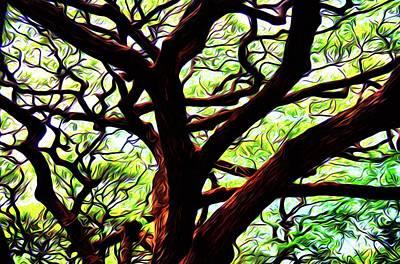 Photograph - Abstract Tree 50 by Kristalin Davis