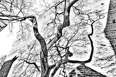 Abstract Tree Duality 3 Original by Kim Lessel