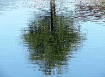 Photograph - Abstract Tree by Laurel Powell