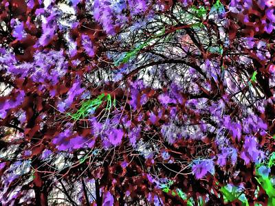 Photograph - Abstract Trees 291 Version 2 by Kristalin Davis
