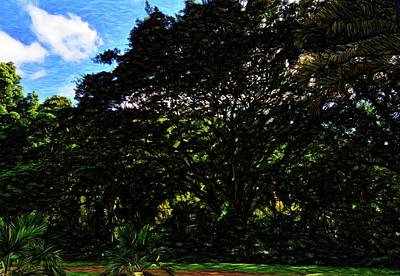 Photograph - Abstract Trees 5804 by Kristalin Davis