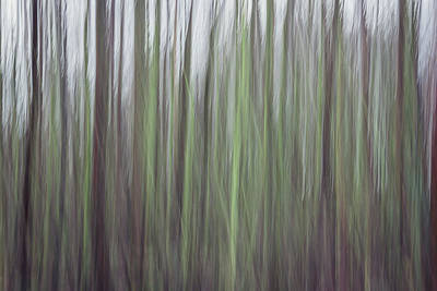 Intentional Camera Movement Photograph - Streaks Of Green by Chris Dale