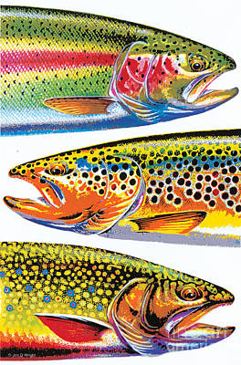 Brrok Painting - Abstract Trout by JQ Licensing Jon Q Wright