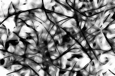 Photograph - Abstract Vines In Black And White by Gina O'Brien