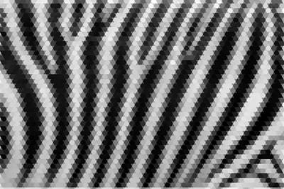 Abstract Zebra Mosaic Pattern Art Print by Celestial Images