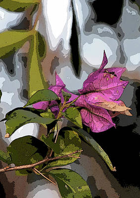 Digital Art - Abstracted Bougainvillea by William Tasker