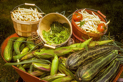 Photograph - Abundance Of Vegtables From Summer Garden by John Brink