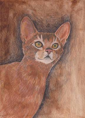 Painting - Abyssinian Cat by Nicole Grattan
