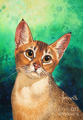 Feline Painting - Abyssinian by John Francis