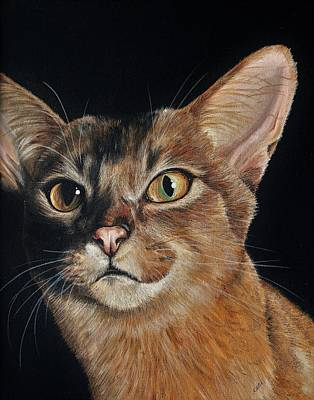 Painting - Abyssinian by Katie McConnachie