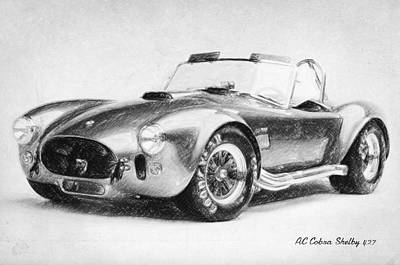 Cobra Drawing - Ac Cobra Shelby 427  by Taylan Apukovska